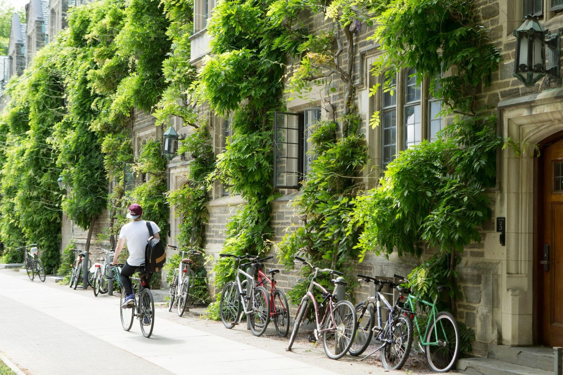 Student biking along an ivy clad campus building